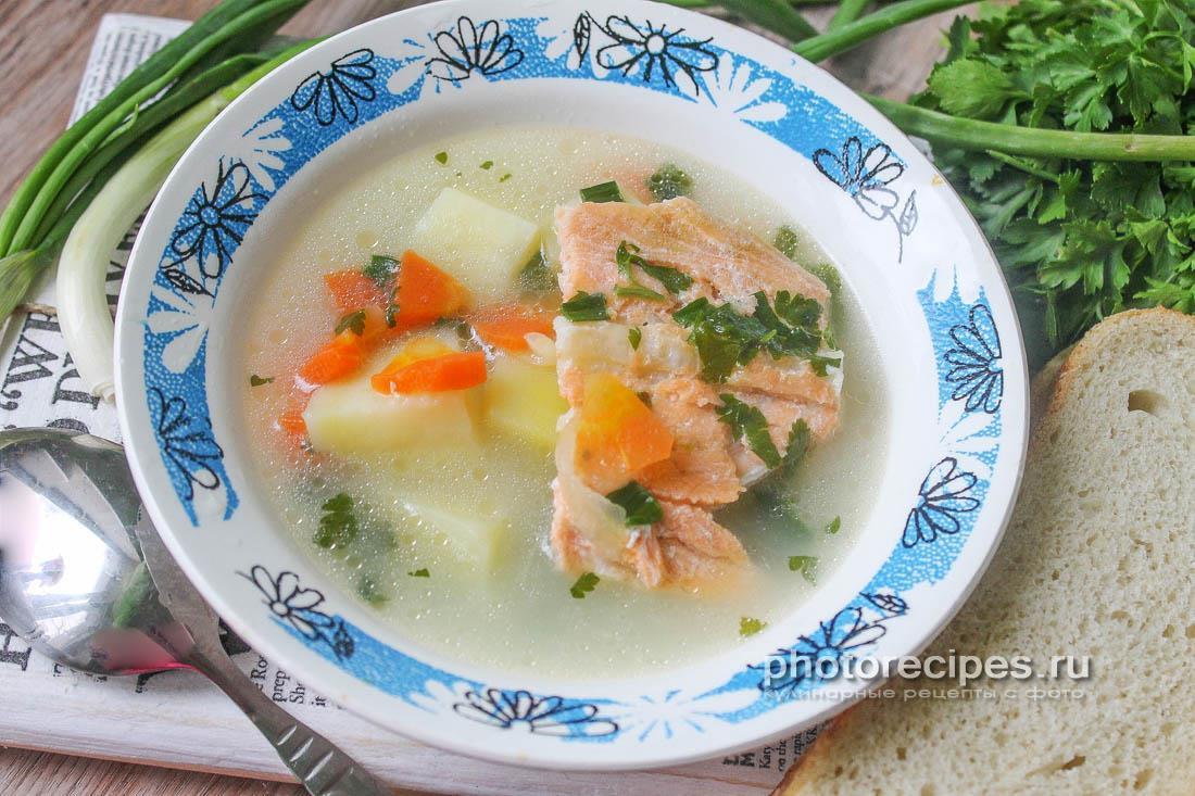 Рыбный суп из хребтов лосося
